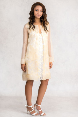 Elegant Lace On Cotton A-Line Dress In Beige